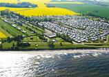 Rosenfelder Strand Ostsee Camping Bild 3