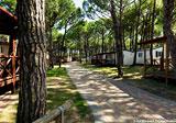 Ca'Pasquali Village Camping Bild 2