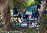 Camping Arinella Bianca Bild 2