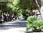 Camping La Pineta Bild 2