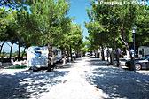 Camping La Pineta Bild 3