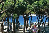 El Pinar Beach Camp Bild 2