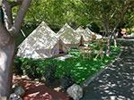 Camping El Pino Bild 3