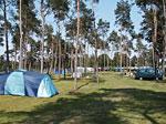Camping Haddorfer Seen Bild 1