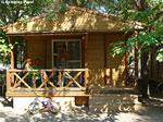 Camping Puzol Bild 1