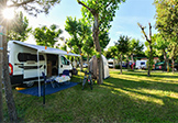 Camping Riva Nuova Bild 1