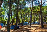 Camping Arena Runke Bild 2