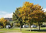 Camping Seefeld Park Sarnen Bild 2