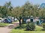 Camping Serenella Bild 1
