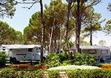 Camping Villaggio Turistico Internazionale Bild 2
