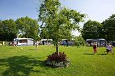 Campingplatz Horn Bild 3