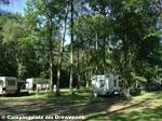 Campingplatz am Drewensee Bild 1
