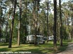 Campingplatz am Leppinsee Bild 2