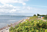 Ostsee-Camping Hemmelmark Bild 3