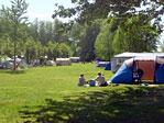 Ostsee-Campingplatz Liebeslaube Bild 3