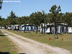 Rødhus Klit Camping Bild 3