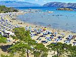 San Marino Camping Resort Bild 1