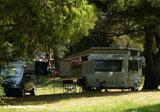 Tunarica Sunny Camping Bild 2