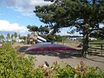 Vikær Strand Camping Bild 3